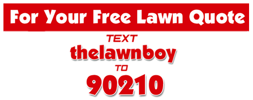 Natchez Lawn Service - The Lawn boy