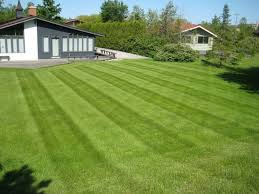 Toms River NJ Lawn Maintenance